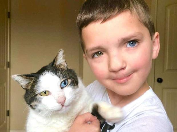 Cùng màu mắt và khuyết tật ở miệng, số phận an bài cậu bé đáng thương và chú mèo hoang trở thành tri kỷ - Ảnh 1.