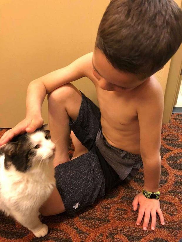 Cùng màu mắt và khuyết tật ở miệng, số phận an bài cậu bé đáng thương và chú mèo hoang trở thành tri kỷ - Ảnh 3.