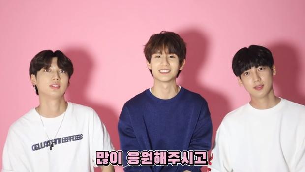 5 cặp sinh đôi nổi tiếng nhất Kbiz: Chị em Hwayoung bị gắn mác rắn độc, Junsu không hot bằng anh em nhóm Boyfriend - Ảnh 6.