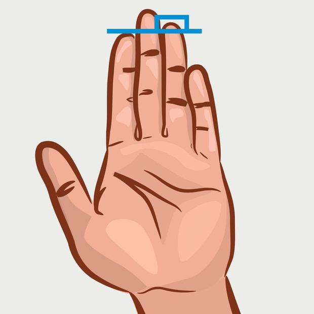 Chiều dài ngón trỏ và ngón đeo nhẫn tiết lộ sự thành đạt, khả năng làm lãnh đạo, ưu – khuyết điểm của bạn! - Ảnh 1.