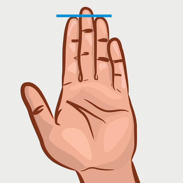 Chiều dài ngón trỏ và ngón đeo nhẫn tiết lộ sự thành đạt, khả năng làm lãnh đạo, ưu – khuyết điểm của bạn! - Ảnh 3.