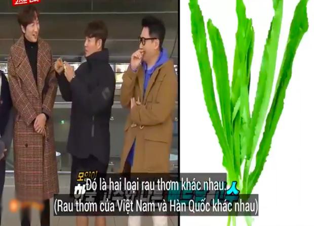 """Các thành viên Running Man Hàn """"lú lẫn"""" vì loại rau thơm khi ăn kèm với phở ở Việt Nam, chú Ji Suk Jin còn bị một vố """"quê độ"""" - Ảnh 7."""