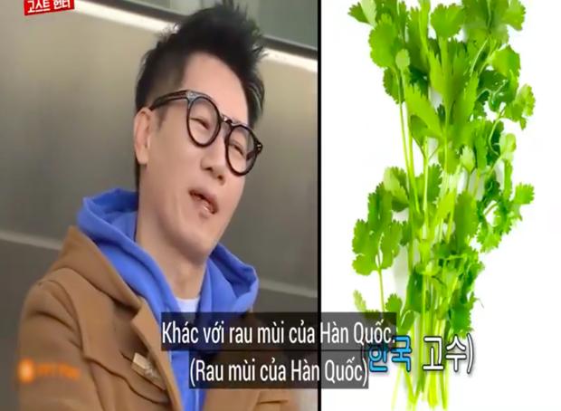 """Các thành viên Running Man Hàn """"lú lẫn"""" vì loại rau thơm khi ăn kèm với phở ở Việt Nam, chú Ji Suk Jin còn bị một vố """"quê độ"""" - Ảnh 6."""