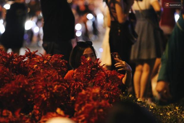 Bất chấp biển cấm, người dân vẫn giẫm đạp lên vườn hoa trước Nhà thờ Đức Bà trong đêm Noel ở Sài Gòn - Ảnh 12.