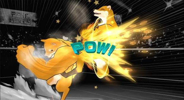 Chó Shiba xoay người đấm móc và Cáo cơ bắp chính thức thượng đài tỷ võ, fan cứng thỏa sức biến hóa! - Ảnh 4.