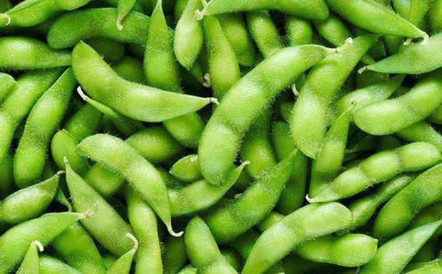 Thực hư chuyện đậu nành ảnh hưởng đến sức khỏe sinh sản - Ảnh 1.