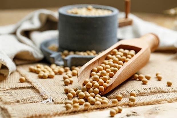 Thực hư chuyện đậu nành ảnh hưởng đến sức khỏe sinh sản - Ảnh 4.