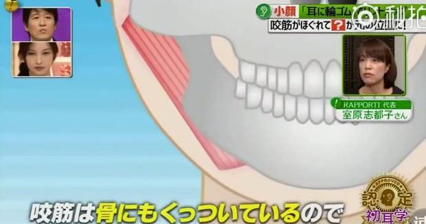 Chỉ cần một sợi dây chun, người Nhật đã chỉ ra phương pháp giúp làm mặt từ O-line thành V-line - Ảnh 10.