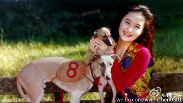Ngất ngây khi nhìn lại nhan sắc thời trẻ của Trần Đức Dung - nữ thần đẹp nhất dưới trướng nữ sĩ Quỳnh Dao - Ảnh 7.