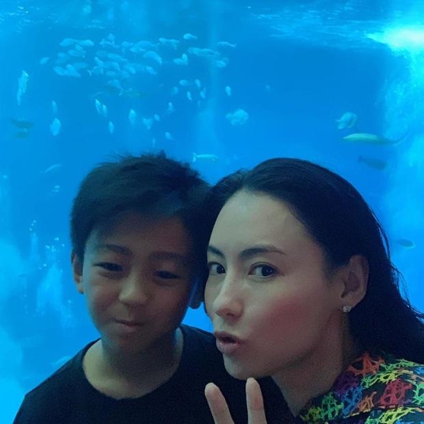 Quý tử thứ 2 nhà Trương Bá Chi: Càng lớn càng điển trai, khí chất không thua kém gì Tạ Đình Phong dù mới 9 tuổi - Ảnh 6.