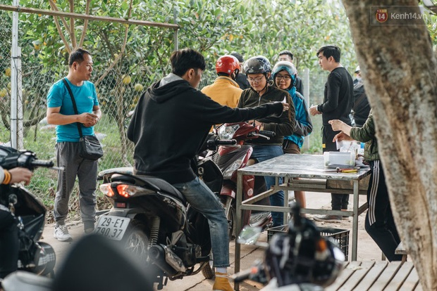Khám phá vườn táo của trường Đại học rộng nhất Việt Nam, chỉ mất 15k là ăn tẹt ga lại còn được đống ảnh sống ảo - Ảnh 4.
