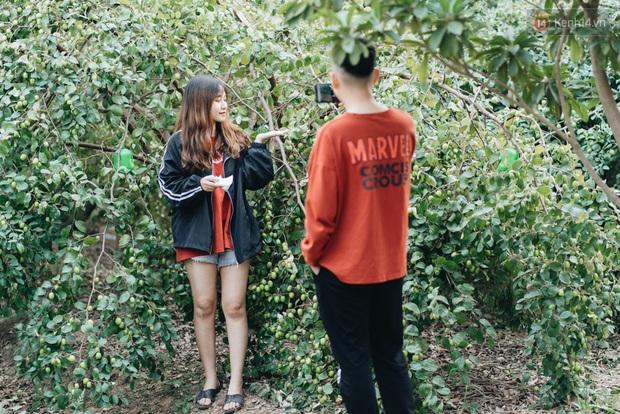 Khám phá vườn táo của trường Đại học rộng nhất Việt Nam, chỉ mất 15k là ăn tẹt ga lại còn được đống ảnh sống ảo - Ảnh 2.