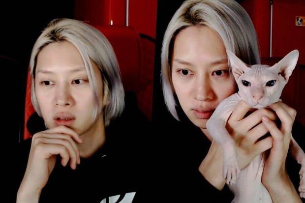 Heechul xác nhận nuôi thú cưng của Sulli, tiết lộ từng khóc không dứt vì tình trạng của chú mèo đắt nhất nhì hành tinh - Ảnh 1.