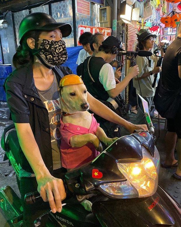 Tình cũ GD Kiko Mizuhara khoe ảnh yêu kiều mặc áo dài Việt Nam, thích thú với chú chó đội mũ bảo hiểm siêu cute - Ảnh 4.