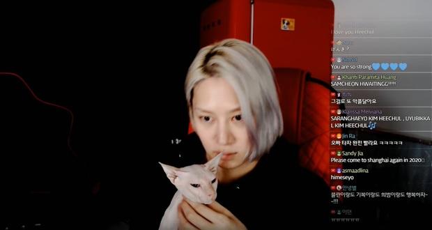 Heechul xác nhận nuôi thú cưng của Sulli, tiết lộ từng khóc không dứt vì tình trạng của chú mèo đắt nhất nhì hành tinh - Ảnh 3.
