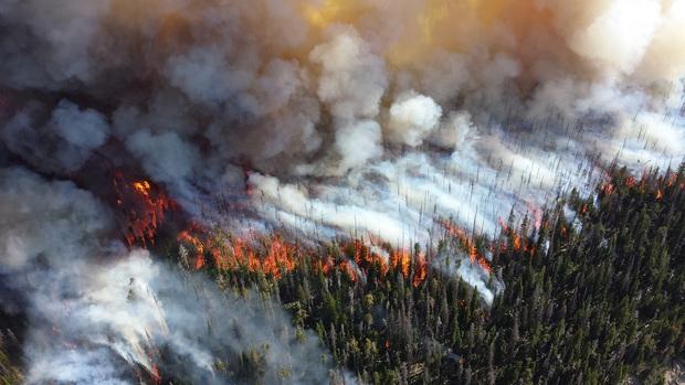 Câu chuyện 10 năm: Cả một thập kỷ khủng hoảng khí hậu thực sự đáng sợ, vậy mà loài người đã chẳng thể làm được gì - Ảnh 2.