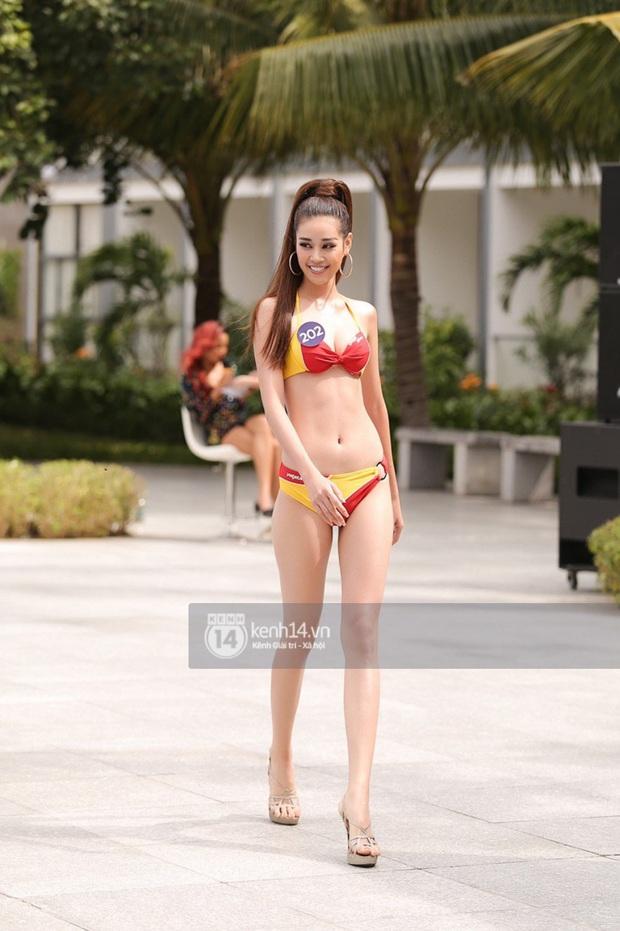 Thí sinh Hoa hậu Hoàn vũ khoe body mướt mắt trong phần thi Người đẹp biển: Ai sẽ giật giải như HHen Niê năm ngoái? - Ảnh 8.