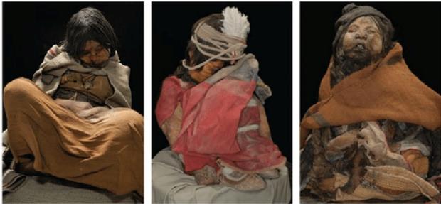 Được chọn hiến tế cho Thần Mặt Trời, 500 năm sau thiếu nữ người Inca trở thành một trong những xác ướp nổi tiếng nhất thế giới - Ảnh 2.