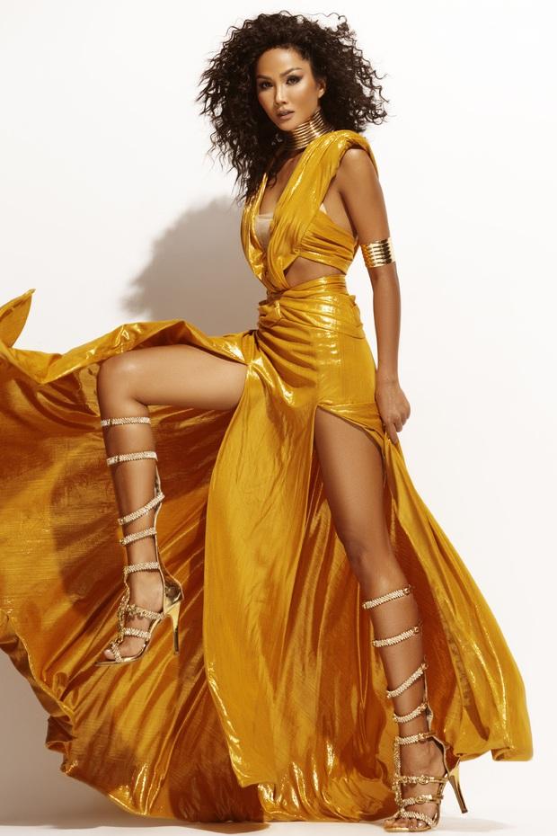 HHen Niê đẹp như nữ thần trong bộ ảnh khép lại nhiệm kỳ Hoa hậu Hoàn vũ: 2 năm qua đã quá xuất sắc rồi! - Ảnh 4.