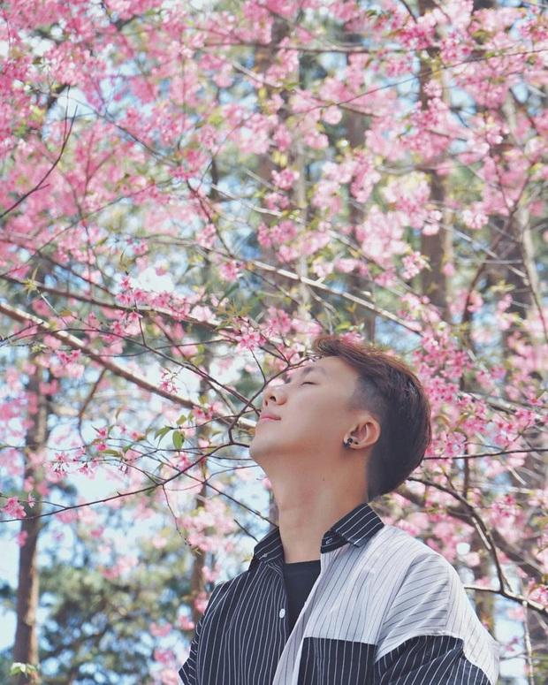 """Góc lừa tình: Dù chưa tới mùa mai anh đào nhưng nhiều fanapge đã đăng thông tin """"hoa nở rộ khắp Đà Lạt"""" gây phẫn nộ - Ảnh 5."""