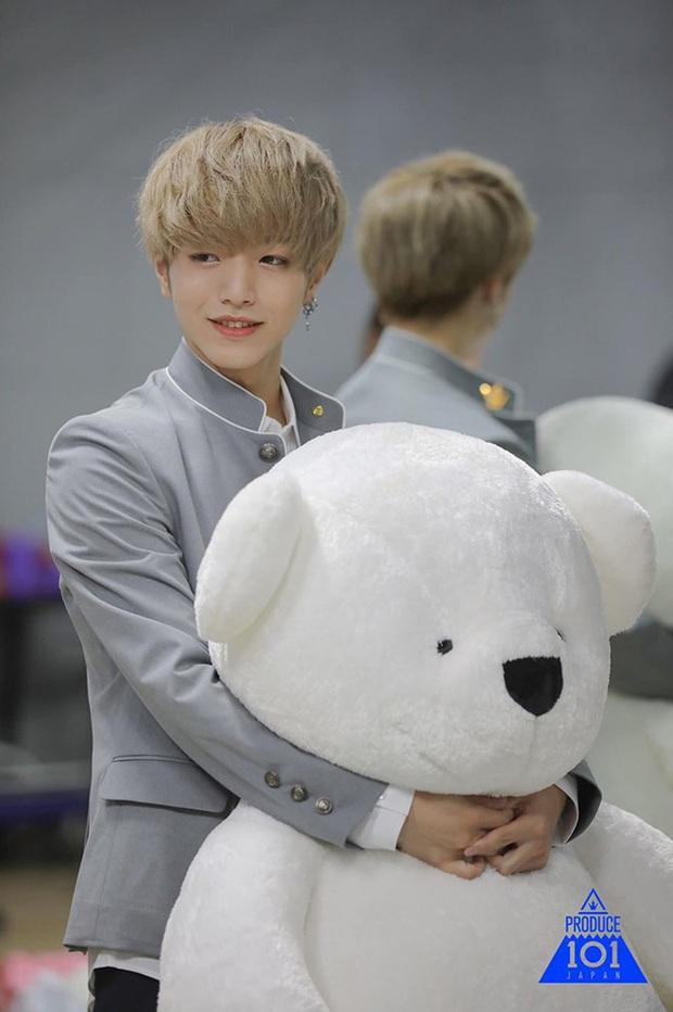 Produce 101 Nhật Bản tung hình top 20 đẹp lồng lộn: Nhan sắc thật chưa photoshop liệu có khác xa? - Ảnh 14.