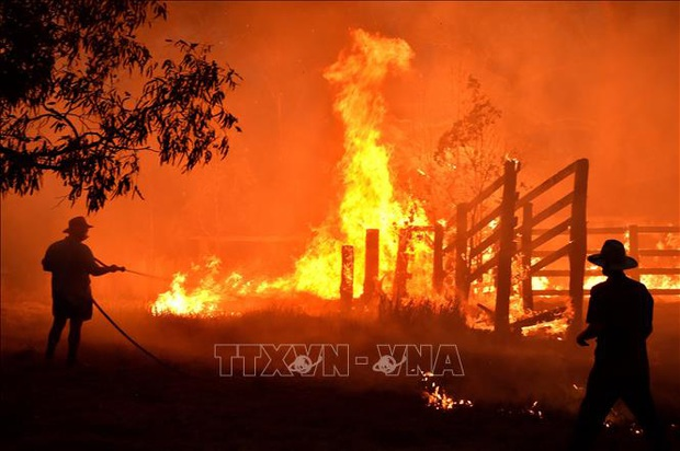 Australia: Cháy rừng hoành hành nghiêm trọng tại bang New South Wales - Ảnh 1.