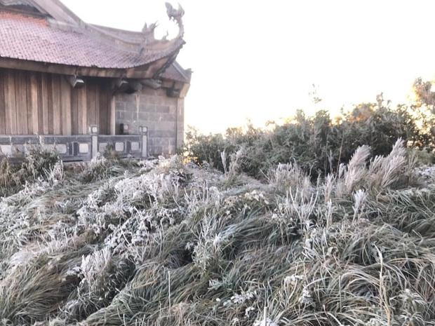 Fansipan hóa núi tuyết, cây cỏ đông cứng trong âm 8 độ - Ảnh 6.