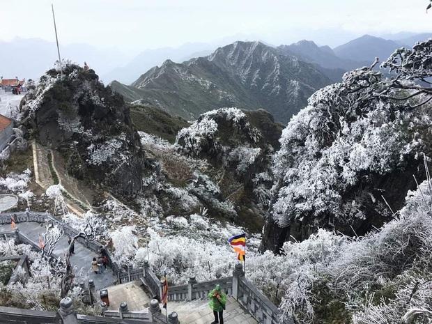 Fansipan hóa núi tuyết, cây cỏ đông cứng trong âm 8 độ - Ảnh 7.