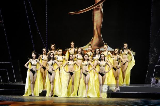 Top 10 toàn thí sinh cao trên 1m7, Hoa hậu Hoàn vũ Việt Nam liệu vẫn coi trọng yếu tố chiều cao? - Ảnh 1.