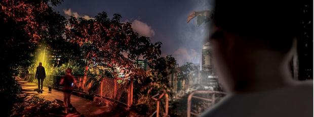 """Vụ đánh bả chó rúng động khu nhà giàu Hong Kong: Những con vật nhỏ bé """"rơi nước mắt màu đen"""" trong tuyệt vọng nhưng thủ phạm mãi là bí ẩn - Ảnh 7."""