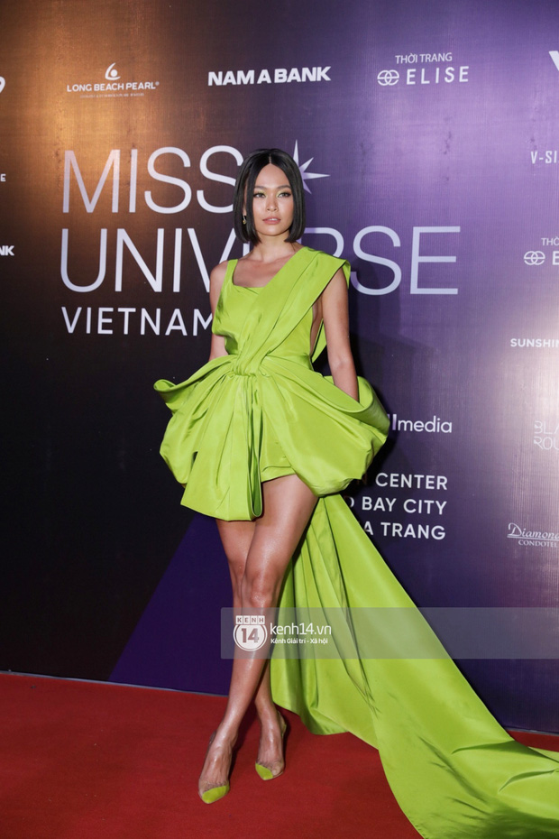 Dàn mỹ nhân, nghệ sĩ đình đám Vbiz đua nhau đọ sắc vóc lộng lẫy trên thảm đỏ chung kết Hoa hậu Hoàn vũ Việt Nam 2019 - Ảnh 4.