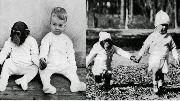 Cho con trai và tinh tinh ăn ngủ cùng nhau để phục vụ thí nghiệm, nhà khoa học vội chấm dứt mọi thứ sau 9 tháng khi phát hiện ra kết quả vượt quá tưởng tượng - Ảnh 2.