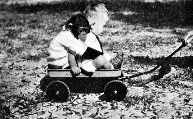 Cho con trai và tinh tinh ăn ngủ cùng nhau để phục vụ thí nghiệm, nhà khoa học vội chấm dứt mọi thứ sau 9 tháng khi phát hiện ra kết quả vượt quá tưởng tượng - Ảnh 5.