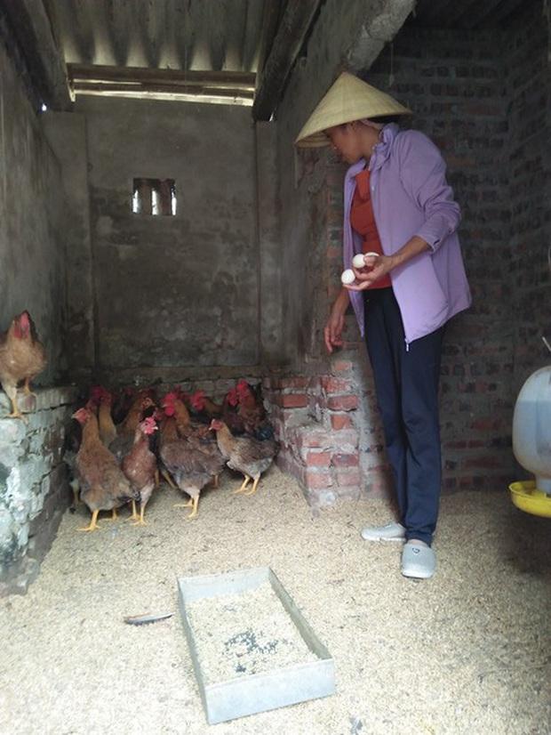 Người phụ nữ bán trứng gà giúp những người cùng cảnh vì ngày mai tươi sáng - Ảnh 1.