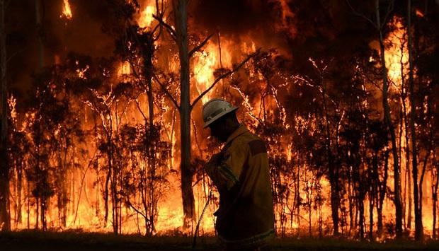 Hết khói bụi trắng cả trời đến biển chuyển màu đen kịt do tro tàn, người dân Úc đang đối diện với thảm họa cháy rừng kinh hoàng nhất - Ảnh 4.