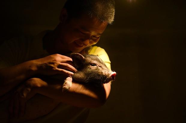 Tết Kỷ Hợi không biết đi đâu chơi, mời ghé thăm công viên Hành tinh Lợn ở Trung Quốc - Ảnh 11.