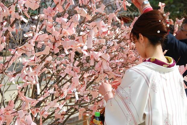 Xem bói ở Nhật Bản: Bị cấm ở nhiều quốc gia nhưng được xứ Phù Tang đặc biệt xem trọng - Ảnh 3.