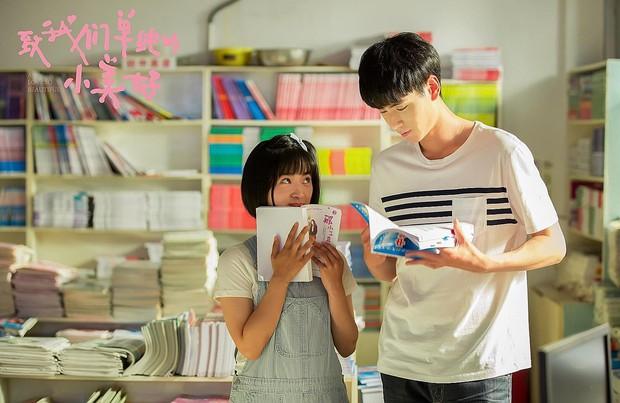 Đổi gió với 6 phim Hoa Ngữ từ thanh xuân vườn trường lãng mạn đến cung đấu căng cực trên Netflix - Ảnh 9.