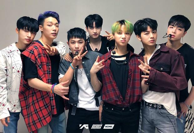 Đừng bỏ lỡ: Tất tần tật kế hoạch comeback của BlackPink, Winner, iKON có trong bài viết này! - Ảnh 4.