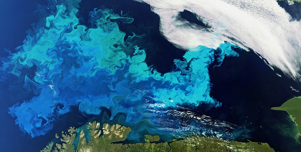 Các đại dương sẽ đổi màu hàng loạt trong tương lai và đây là lý do vì sao đó là tin rất xấu - Ảnh 2.