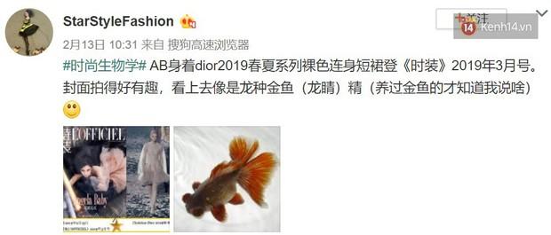 """Một chiếc váy 2 số phận: Song Hye Kyo sang chảnh như bà hoàng, Angela Baby lại bị ví như """"cá vàng bơi tung tăng"""" - Ảnh 4."""