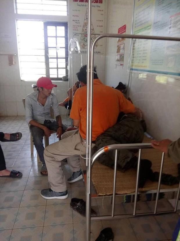 Đi tảo mộ, 7 người bị ong đốt phải nhập viện - Ảnh 1.