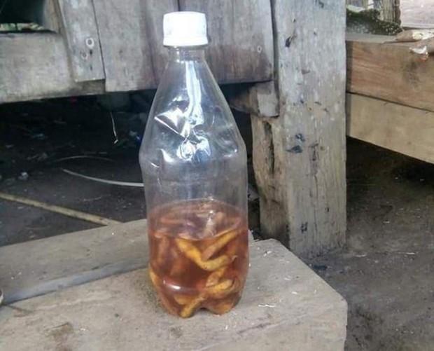 3 giáo viên và 1 phụ nữ nhập viện vì ngộ độc do uống rượu ngâm rễ cây, ăn nấm lạ - Ảnh 1.