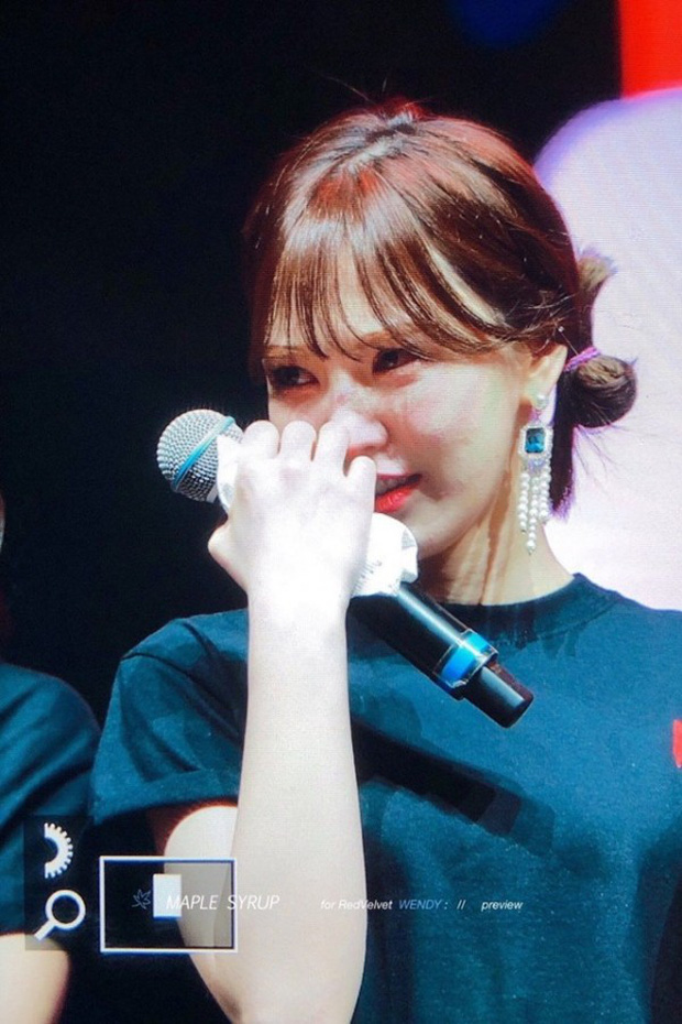 Các thành viên Red Velvet không cầm được nước mắt trên sân khấu concert khi Wendy chia sẻ điều này - Ảnh 3.