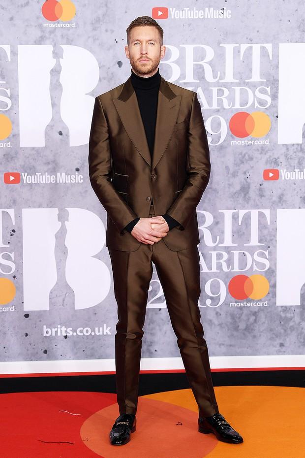 Thảm đỏ BRIT Awards 2019: Pink, Shawn Mendes dẫn đầu dàn sao, nhưng spotlight thuộc về loạt màn đọ sắc gây sốc - Ảnh 11.