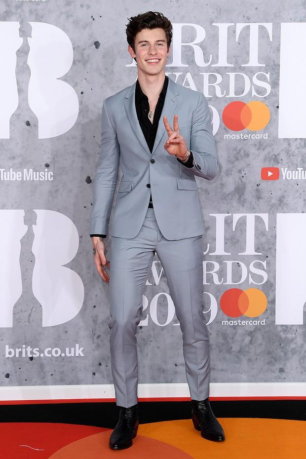 Thảm đỏ BRIT Awards 2019: Pink, Shawn Mendes dẫn đầu dàn sao, nhưng spotlight thuộc về loạt màn đọ sắc gây sốc - Ảnh 5.