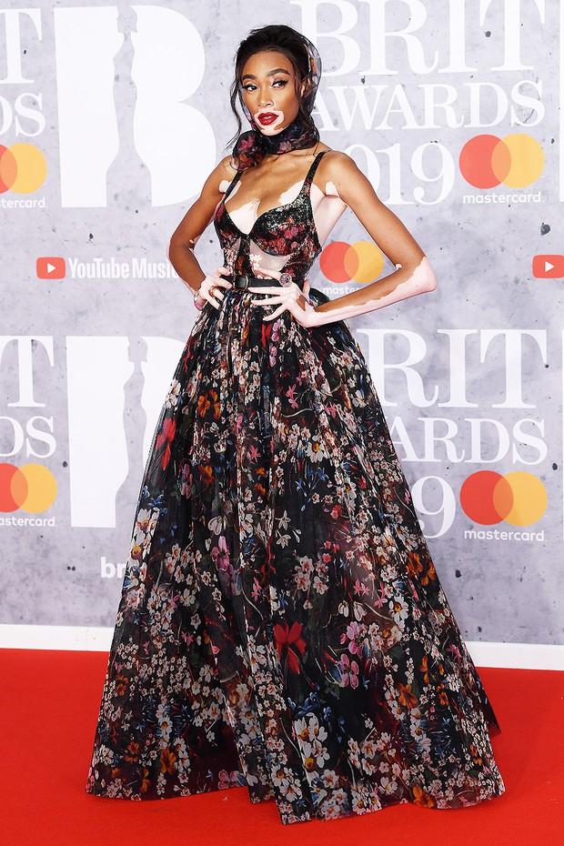 Thảm đỏ BRIT Awards 2019: Pink, Shawn Mendes dẫn đầu dàn sao, nhưng spotlight thuộc về loạt màn đọ sắc gây sốc - Ảnh 15.