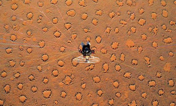 Những vòng tròn thần tiên đầy bí ẩn giữa sa mạc khiến khoa học đau đầu chuẩn bị có một lời giải mới - Ảnh 1.