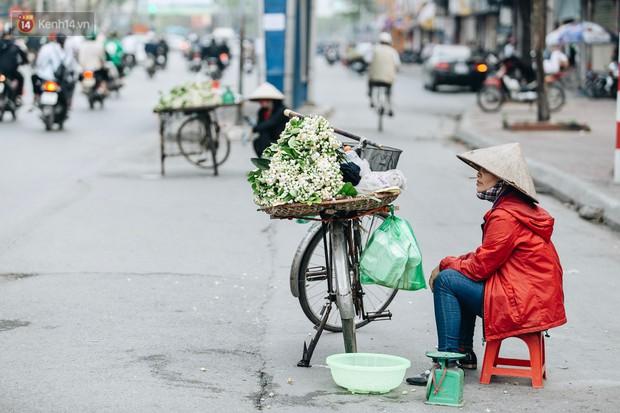 Hoa bưởi tháng 2 theo gió xuống phố Hà Nội, giá lên đến 300.000 đồng/kg vẫn cháy hàng - Ảnh 1.