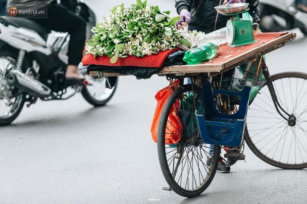 Hoa bưởi tháng 2 theo gió xuống phố Hà Nội, giá lên đến 300.000 đồng/kg vẫn cháy hàng - Ảnh 12.